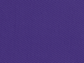 Purple 17_349.jpg