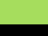Neon Green/Black 47_569.jpg