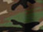 Camouflage Green 56_546.jpg