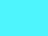 Turquoise 57_536.jpg