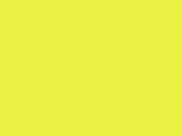 Neon Yellow 5_605.jpg