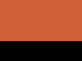 Burnt Orange/Black 60_457.jpg