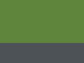 Extreme Green/Seal Grey 74_557.jpg