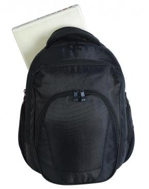Splendid Laptop Backpack